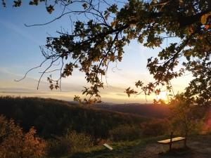 Podzim v Bohnicích