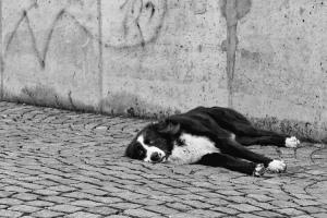 Když odpočinek, tak jedno kde