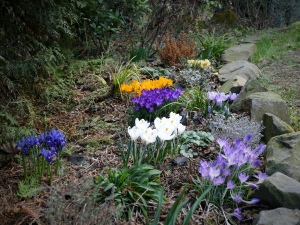 Jaro je tu