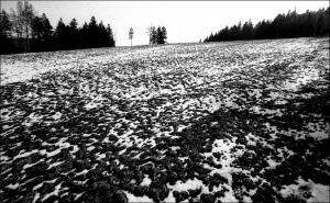 Zima 4