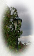 Světlo versus příroda