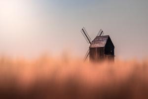 mlýn v obilí